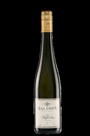 SALOMON RR Pfaffenberg